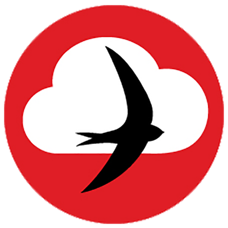 Swift Bird Above Cloud Image